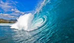 Member ROI Wave...Proving Real Dollar Member ROI for Consistent Growth